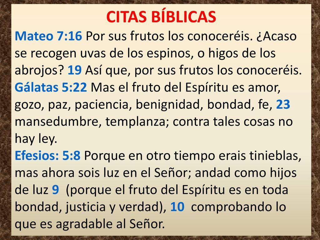 El Fruto Efesios 5 8 9 El Fruto Efesios 5 8 9 Ppt Video