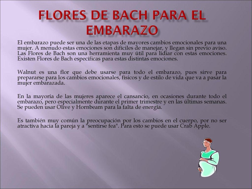 Flores De Bach Para El Embarazo Ppt Descargar