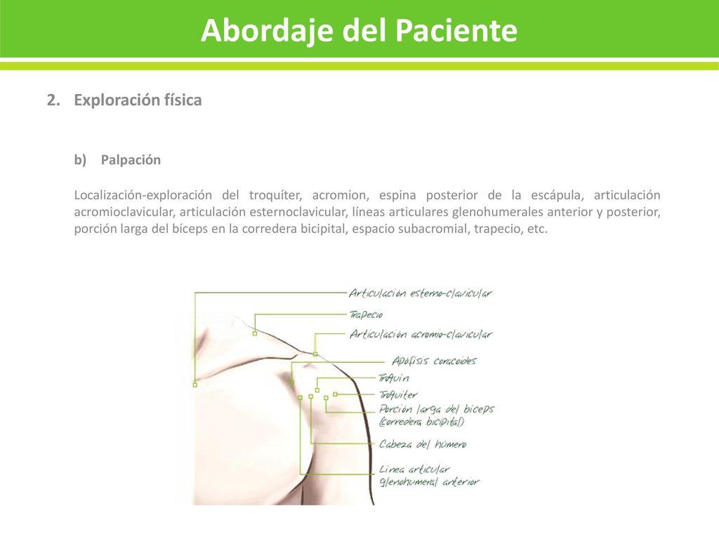 Guía para el abordaje del HOMBRO DOLOROSO en el síndrome subacromial ...