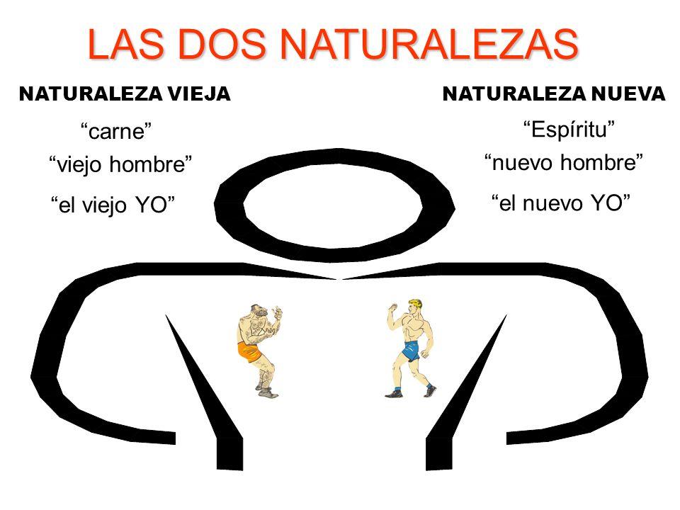9de73ffd4 LAS DOS NATURALEZAS DEL CRISTIANO - ppt video online descargar
