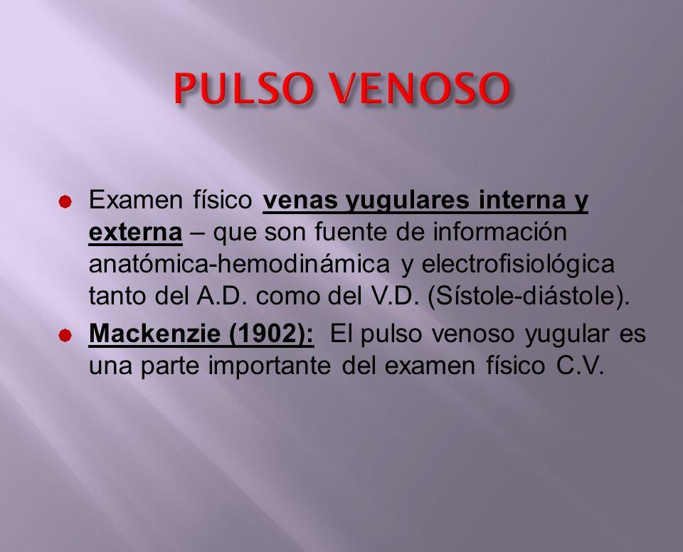 Pulso Venoso Dr. Gilberth Vázquez E. Cardiólogo – Internista. - ppt ...