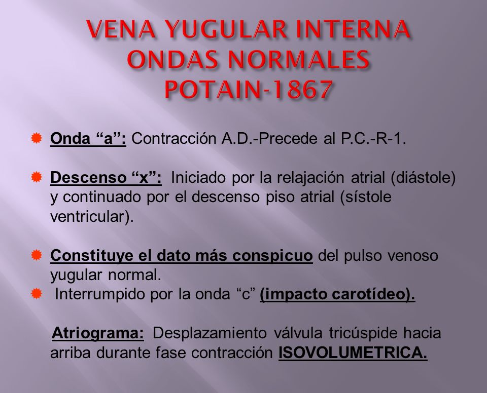 VENA YUGULAR INTERNA ONDAS NORMALES POTAIN-1867