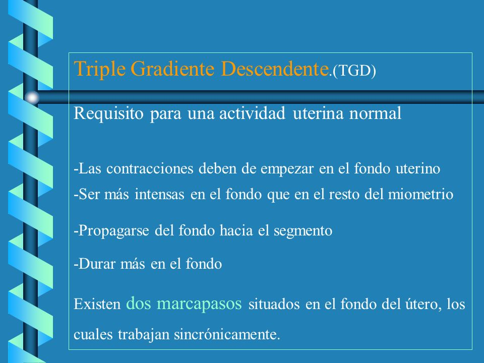 Triple Gradiente Descendente.(TGD)