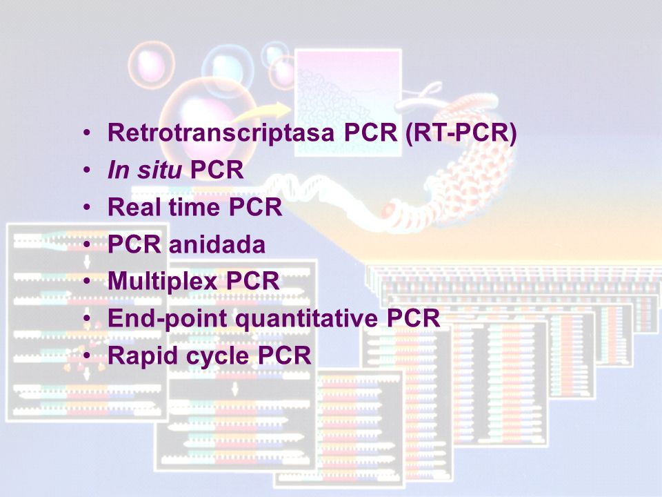 Retrotranscriptasa PCR (RT-PCR)
