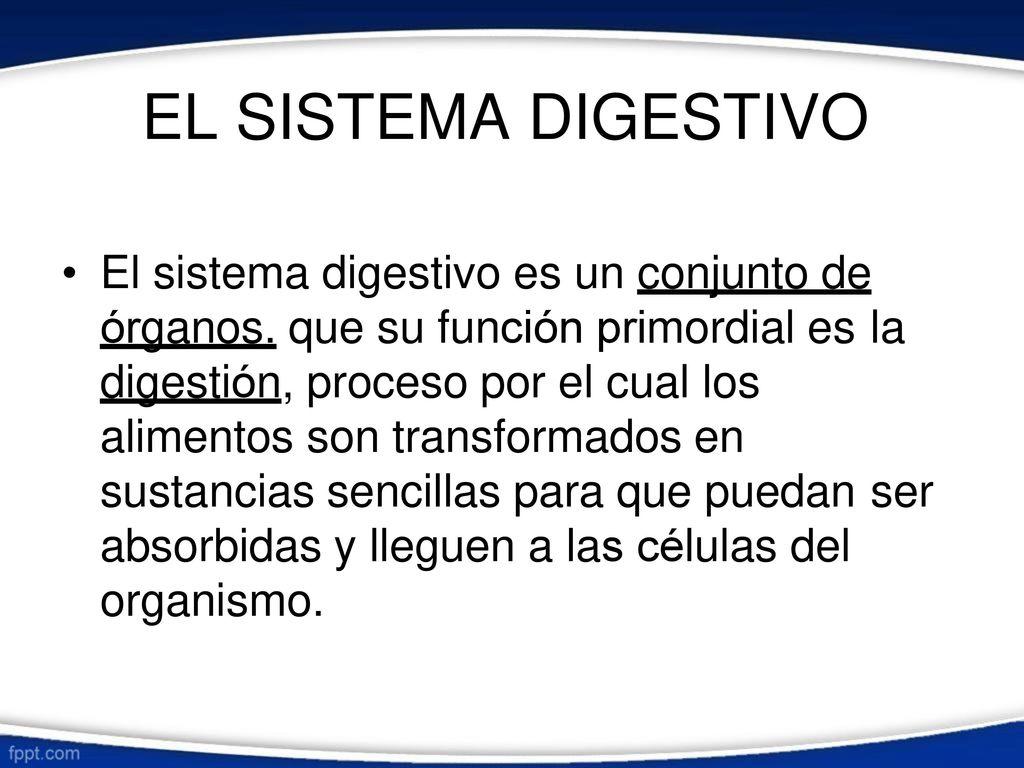 Anatomía y Fisiología del Sistema Digestivo - ppt descargar