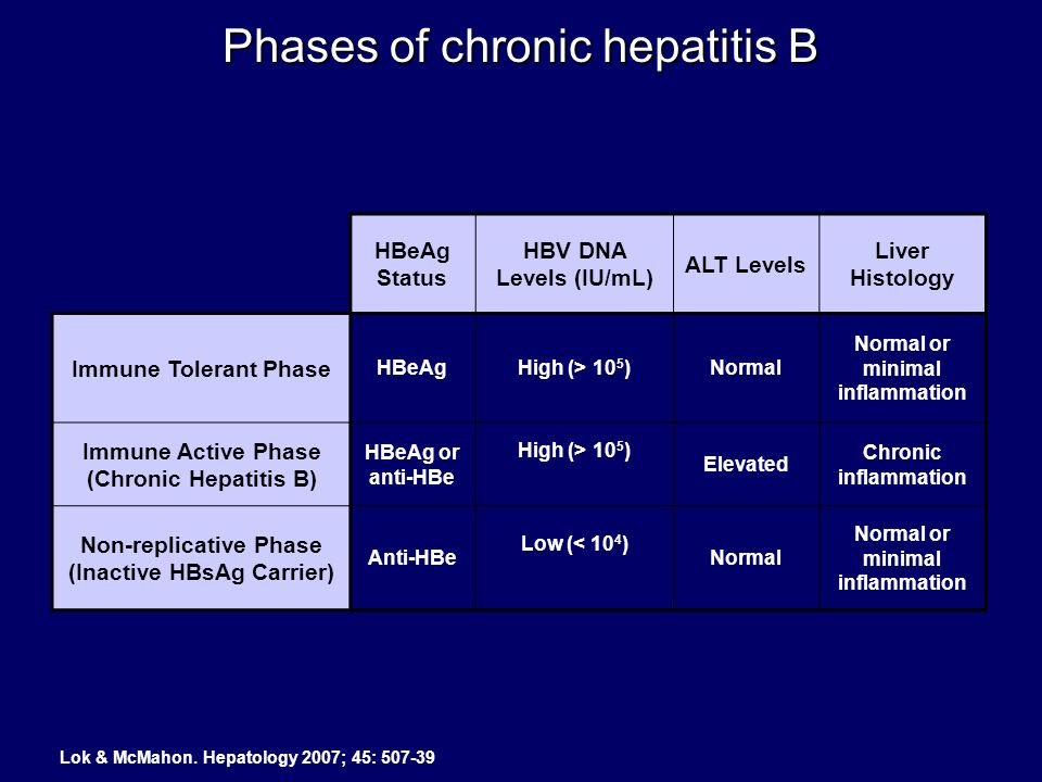 Phases of chronic hepatitis B