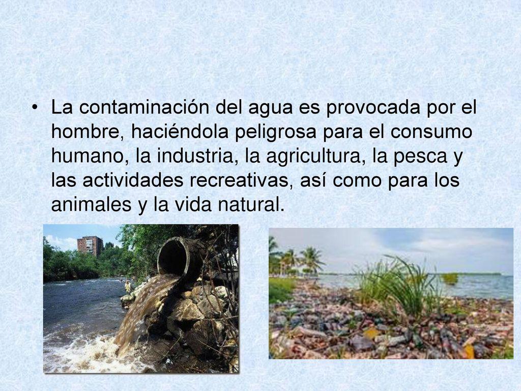 Captura y cr a de peces u otras especies acu ticas ppt for Cria de peces para consumo humano