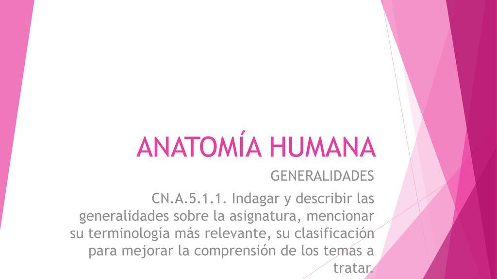 ANATOMÍA HUMANA GENERALIDADES - ppt descargar