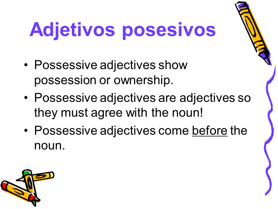 Adjetivos posesivos Possessive adjectives show possession or ownership. Possessive adjectives are adjectives so they must agree with the noun!