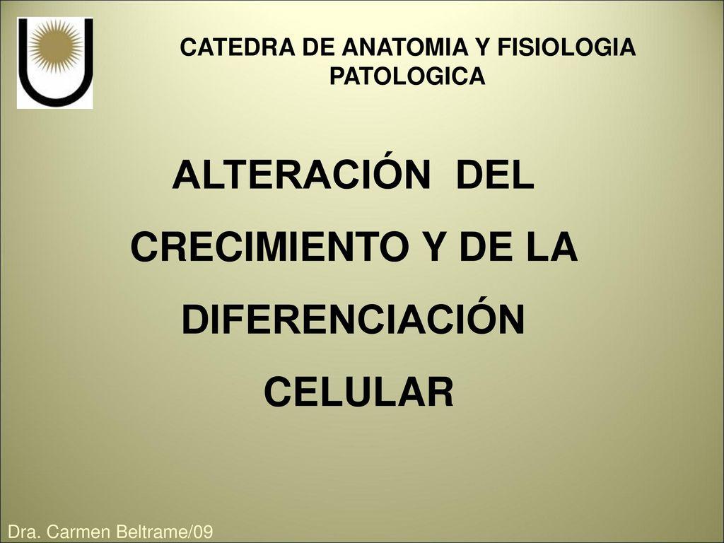 CATEDRA DE ANATOMIA Y FISIOLOGIA PATOLOGICA - ppt descargar