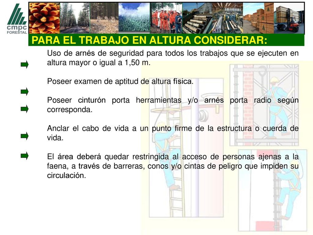 TALLER INSTRUCTIVO TRABAJO EN ALTURA - ppt descargar