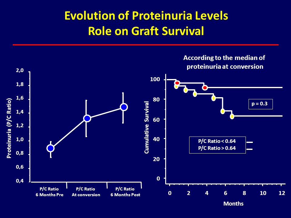 Evolution of Proteinuria Levels Role on Graft Survival