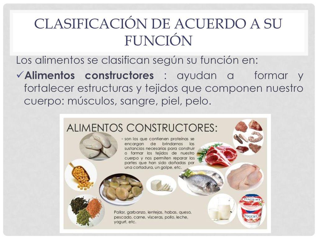 Clasificación de los alimentos - ppt video online descargar