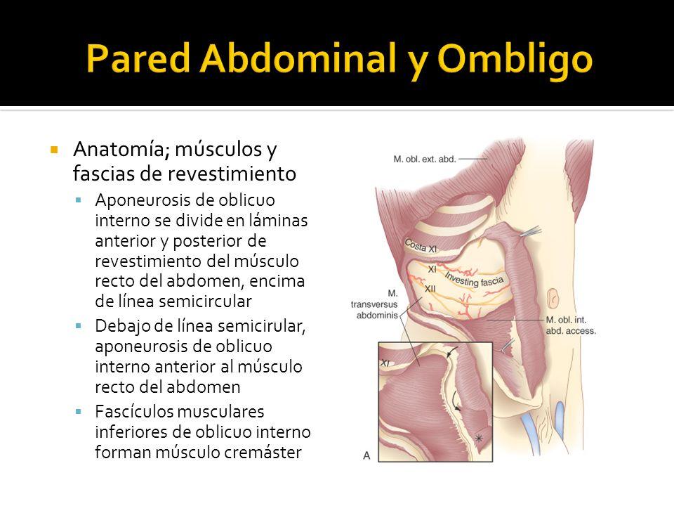 Servicio de Cirugía General - ppt video online descargar