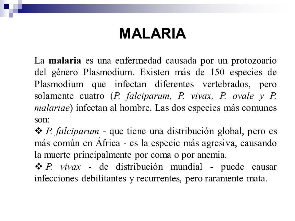 enfermedad causada por plasmodium