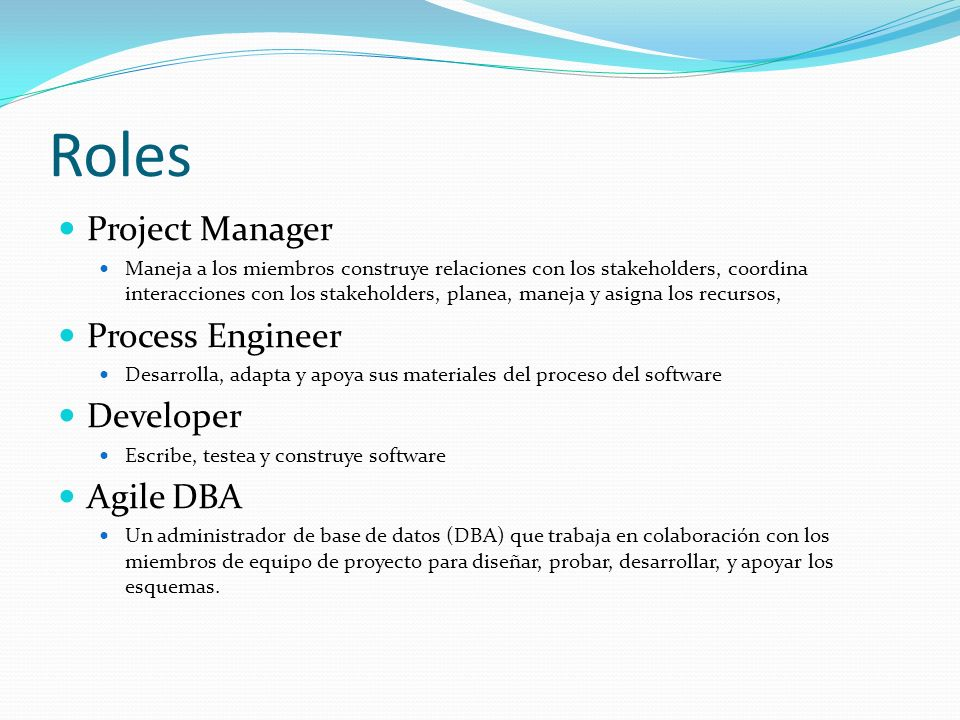 Roles Project Manager Process Engineer Developer Agile DBA