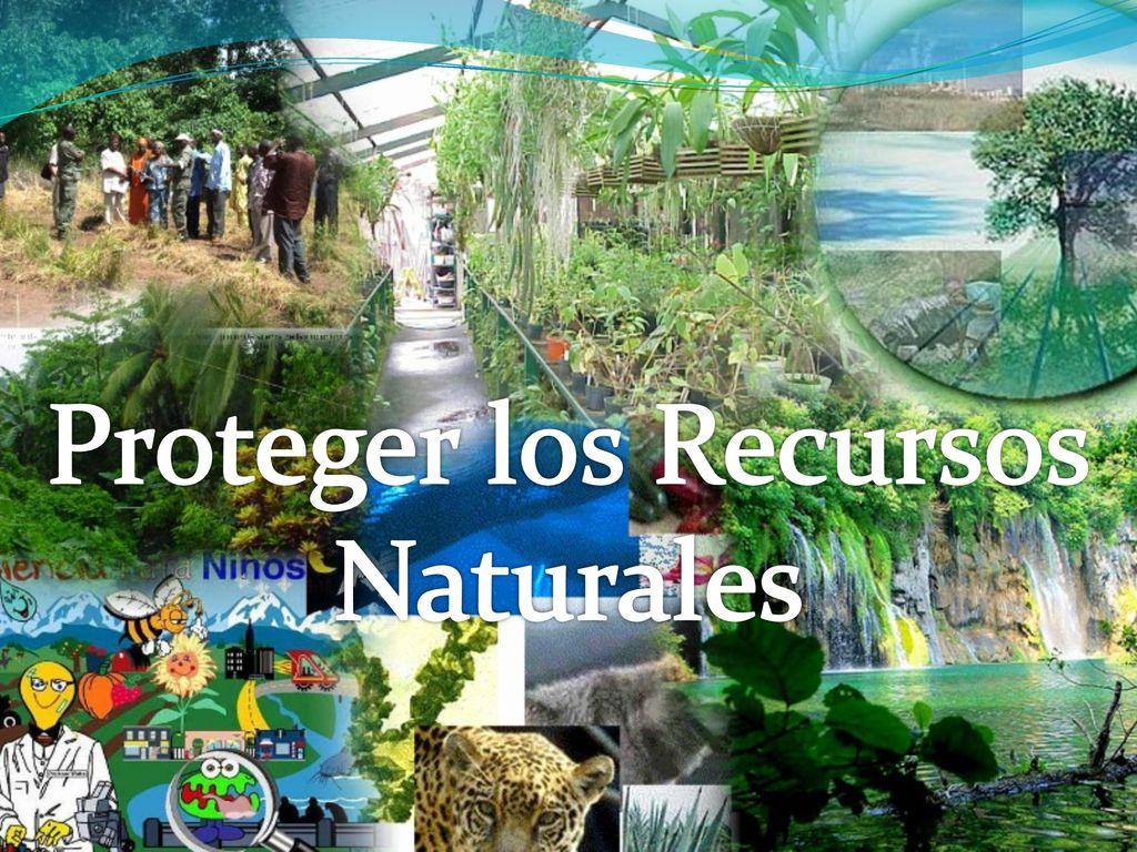 los recursos naturales