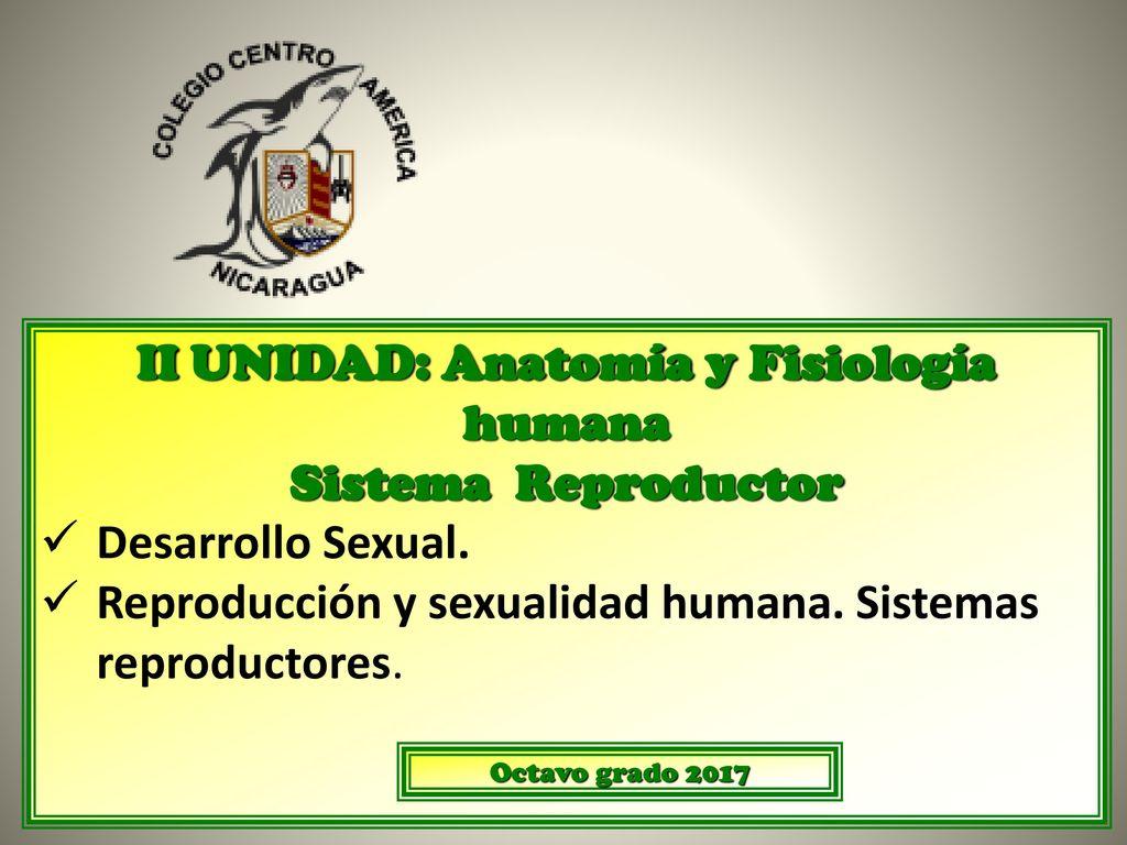 II UNIDAD: Anatomía y Fisiología humana - ppt descargar