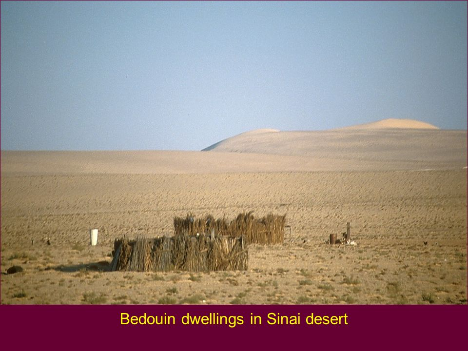Bedouin dwellings in Sinai desert