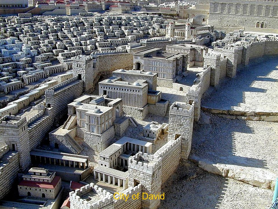 City of David City of David The City of David