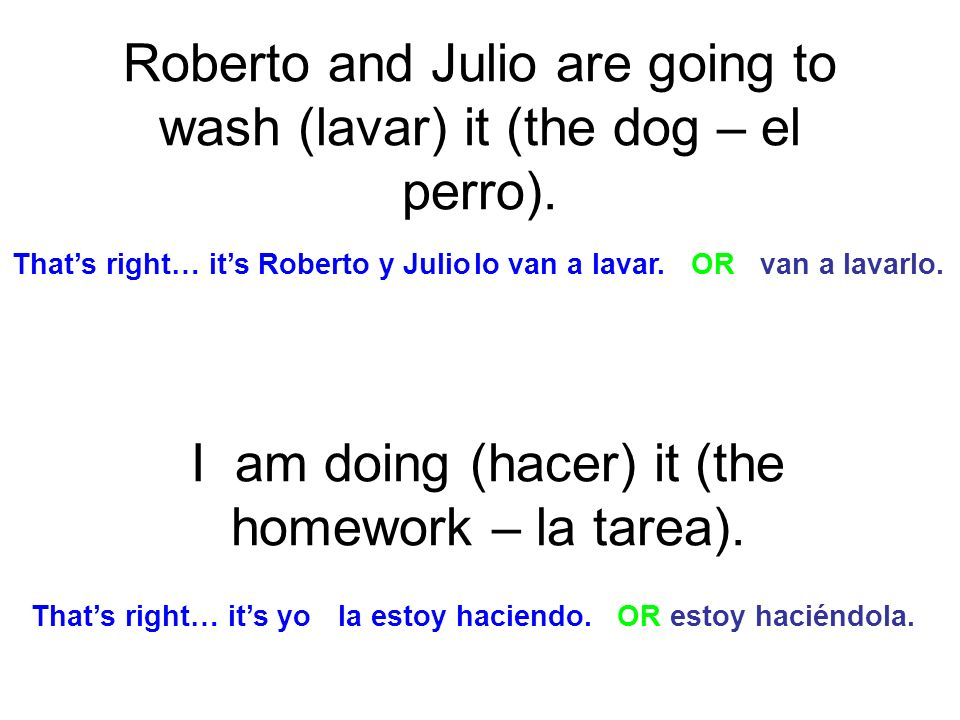 Roberto and Julio are going to wash (lavar) it (the dog – el perro).