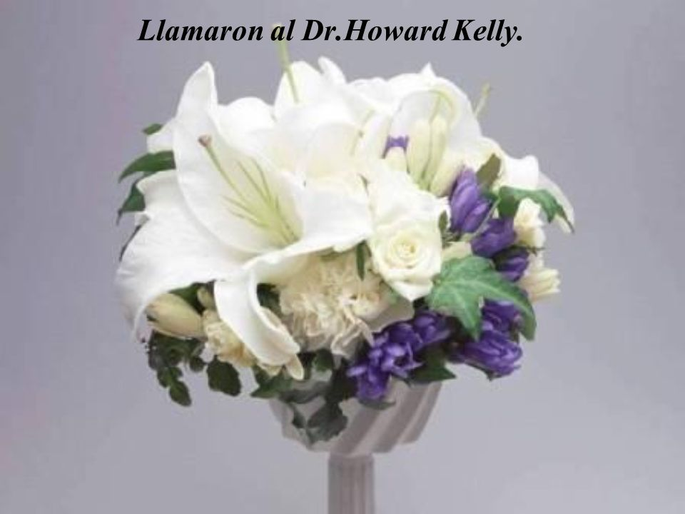 Llamaron al Dr.Howard Kelly.
