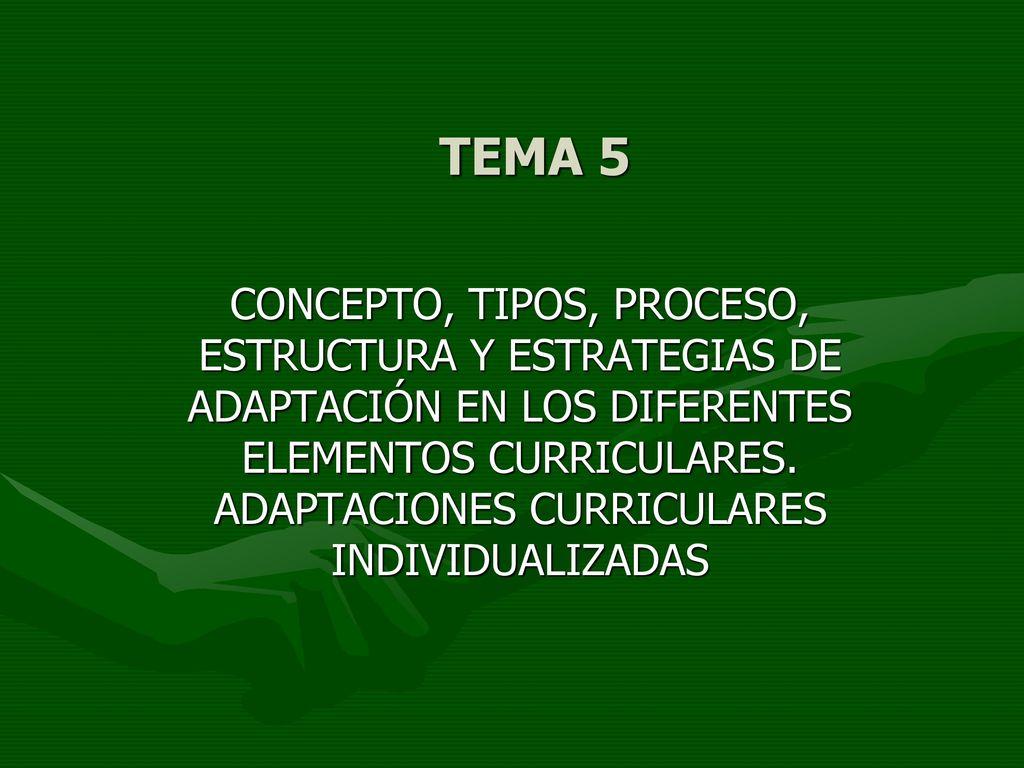 Tema 5 Concepto Tipos Proceso Estructura Y Estrategias De