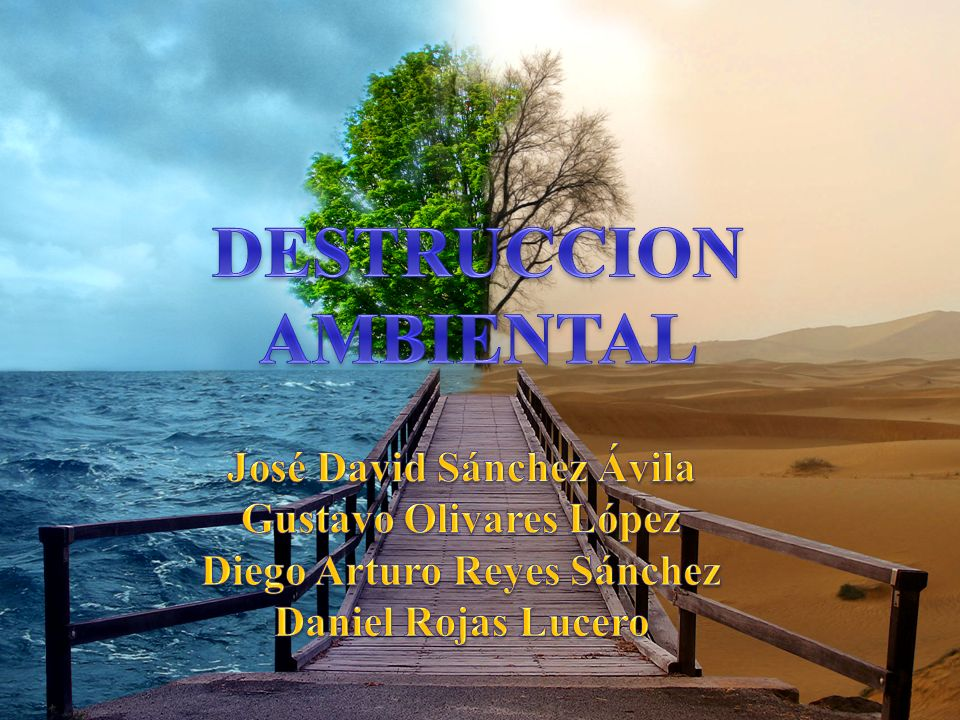 DESTRUCCION AMBIENTAL