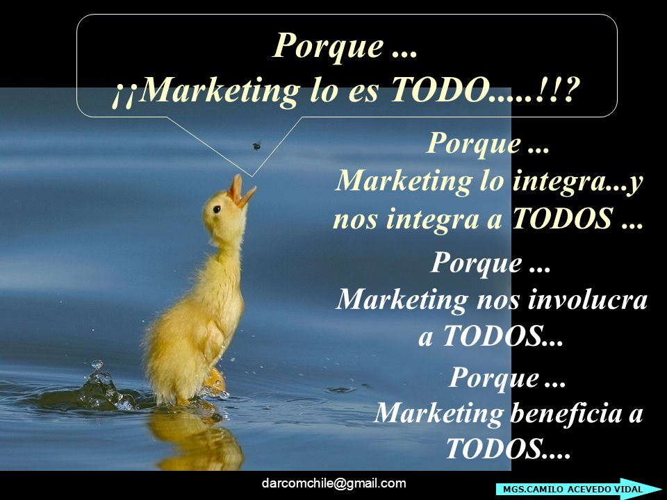 Porque ... ¡¡Marketing lo es TODO.....!!
