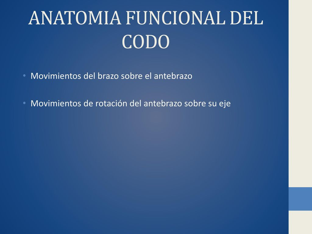 ANATOMIA FUNCIONAL E IMAGENOLOGIA DEL MIEMBRO SUPERIOR - ppt descargar