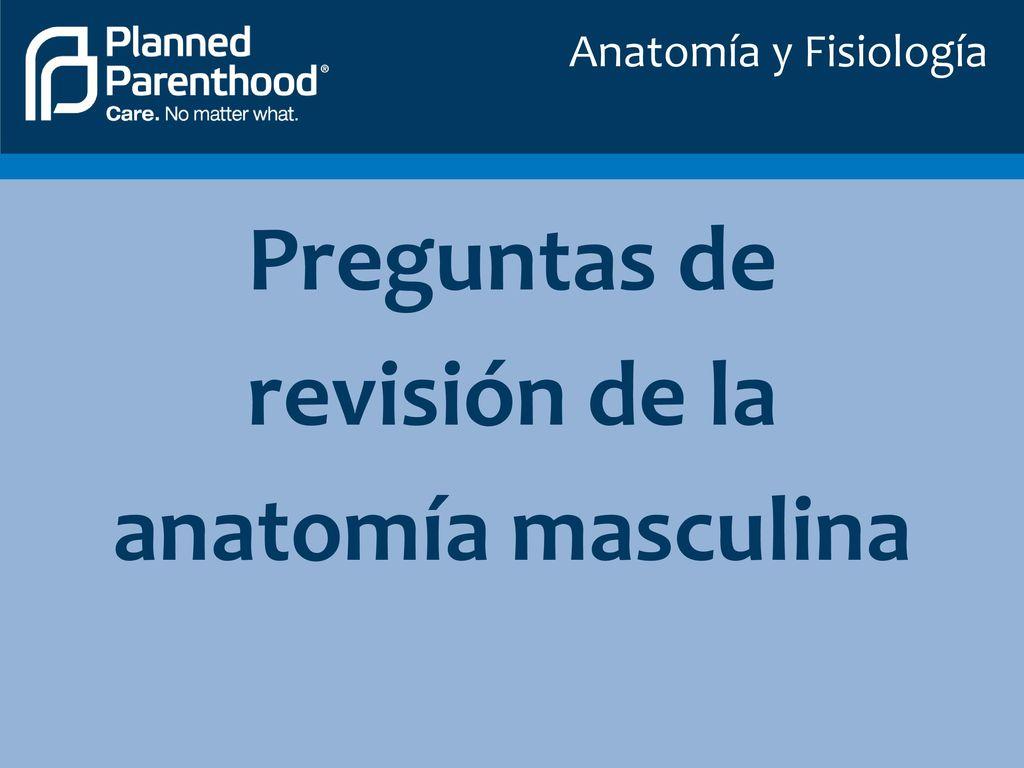 Anatomía y Fisiología. - ppt descargar