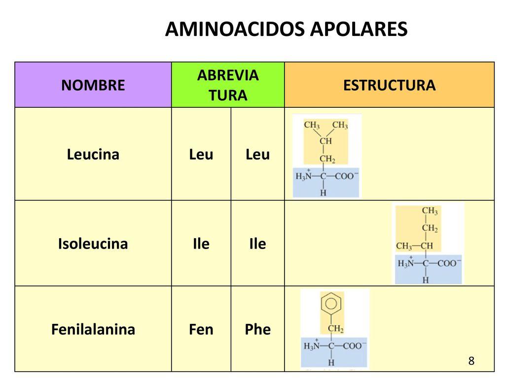 Aminoácidos Y Péptidos Química Ppt Descargar