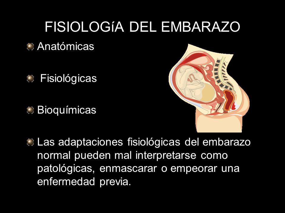 FISIOLOGíA DEL EMBARAZO - ppt descargar
