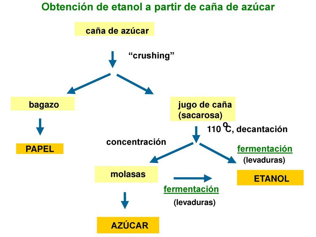 Circuito Productivo De La Caña De Azucar : Obtención de etanol a partir de caña de azúcar ppt descargar