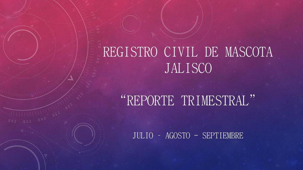 Registro Civil De Mascota Jalisco Reporte Trimestral Ppt