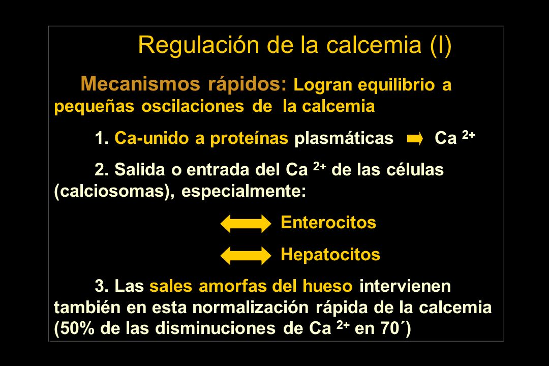 Regulación de la calcemia (I)
