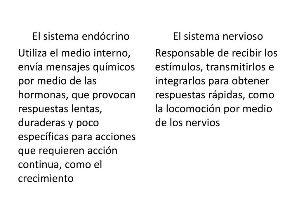 Increíble La Hoja De Trabajo Sistema Endocrino Composición - hojas ...