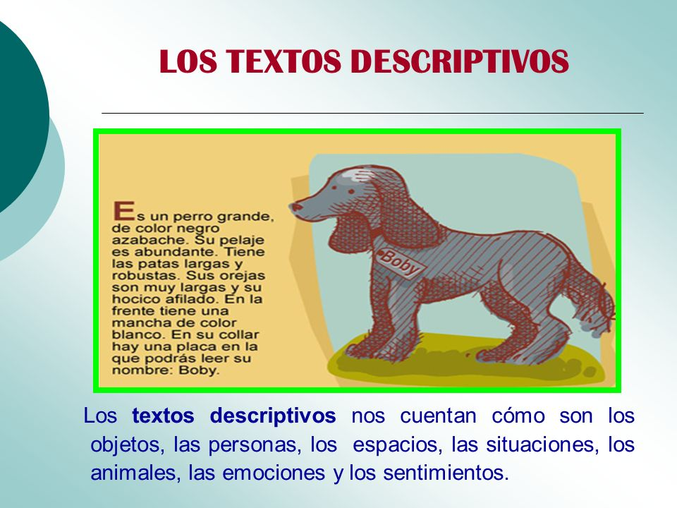 LOS TEXTOS DESCRIPTIVOS