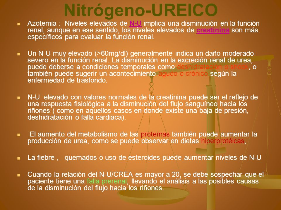 nitrogeno ureico y creatinina elevados