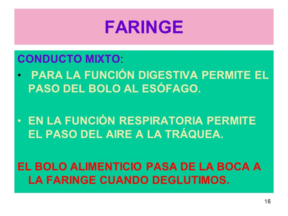 FARINGE CONDUCTO MIXTO: