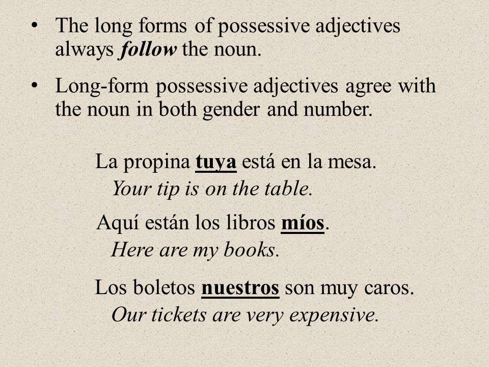 The long forms of possessive adjectives always follow the noun.