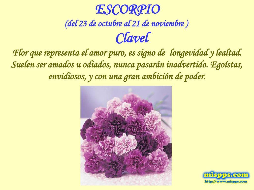 Los Signos Zodiacales y las flores. - ppt descargar