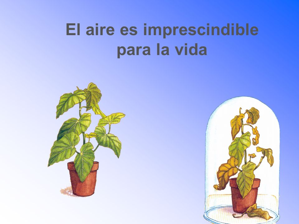 El aire es imprescindible
