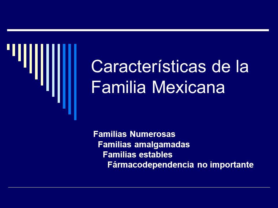 Concepto De Familia Estructura Familiar Dr Alejandro Lugo