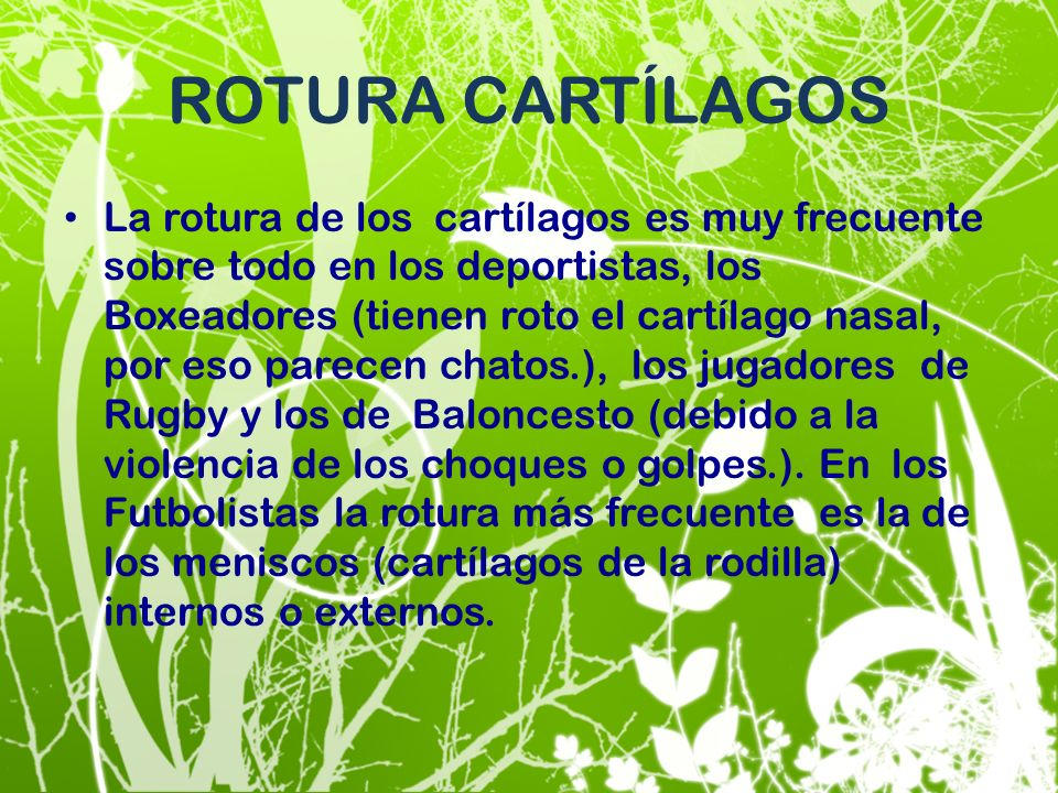 ROTURA CARTÍLAGOS