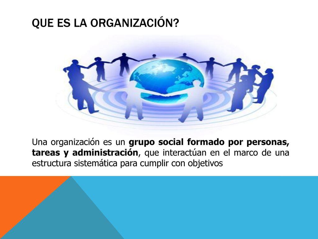 La Organización Y La Importancia De La Estructura