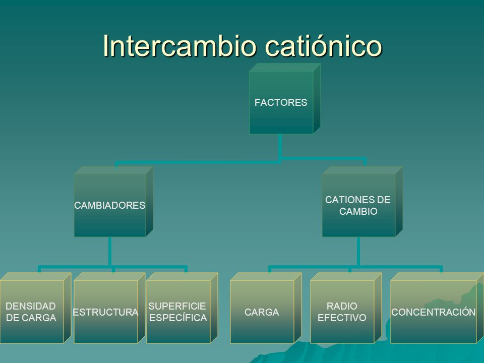 Intercambio catiónico
