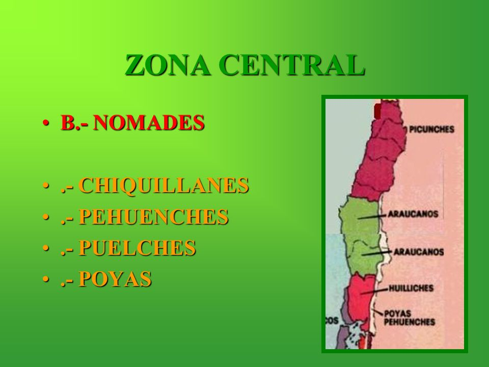 ZONA CENTRAL B.- NOMADES .- CHIQUILLANES .- PEHUENCHES .- PUELCHES