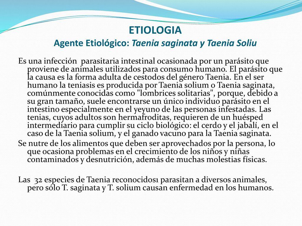 teniasis etiológia epidemiológia)
