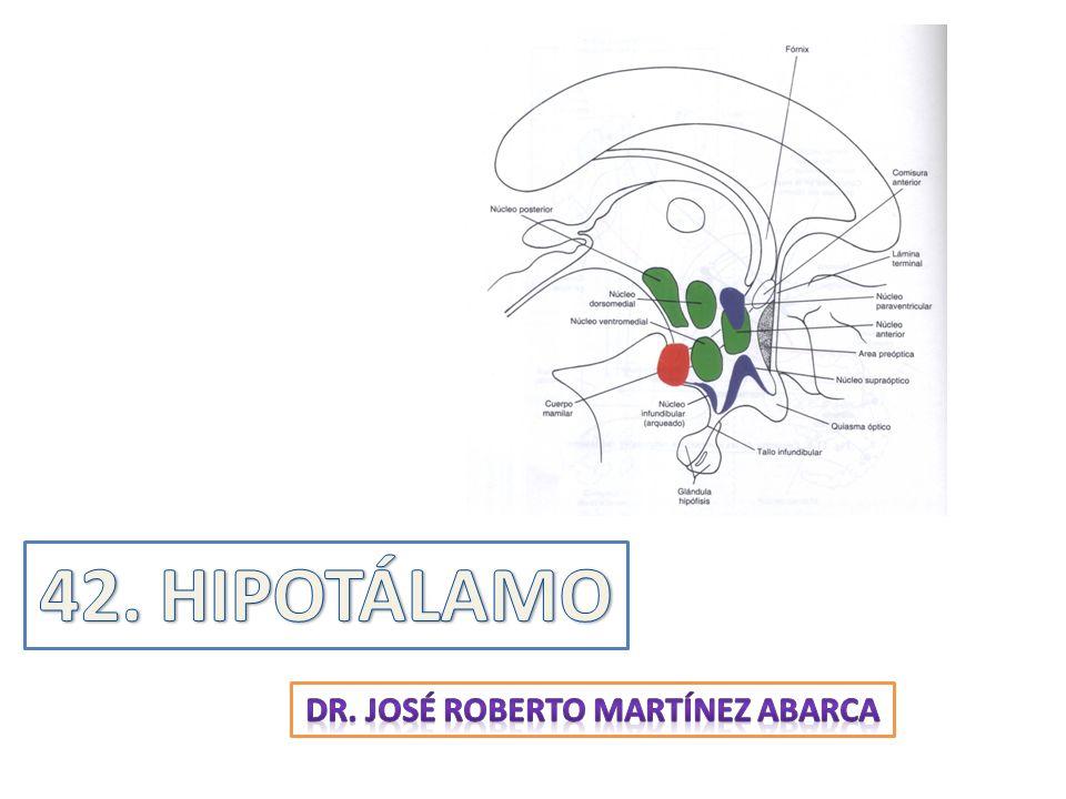 26599e91789 Dr. José roberto martínez abarca - ppt descargar